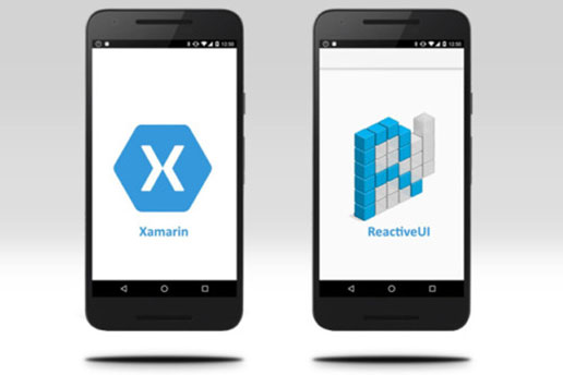 Xamarin Forms Entry: How to Extend the functionality of